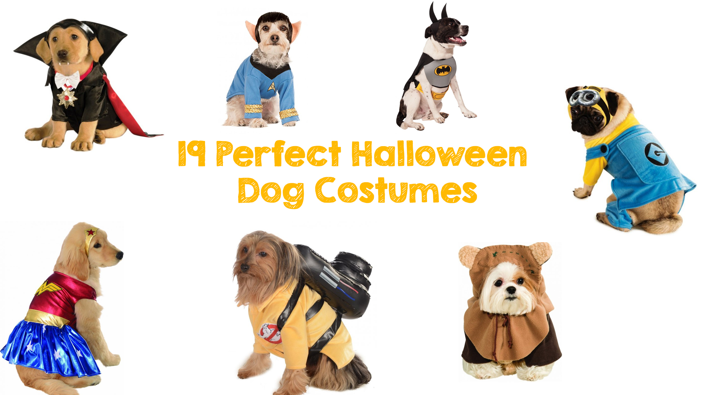 19 Perfect Halloween Dog Costumes