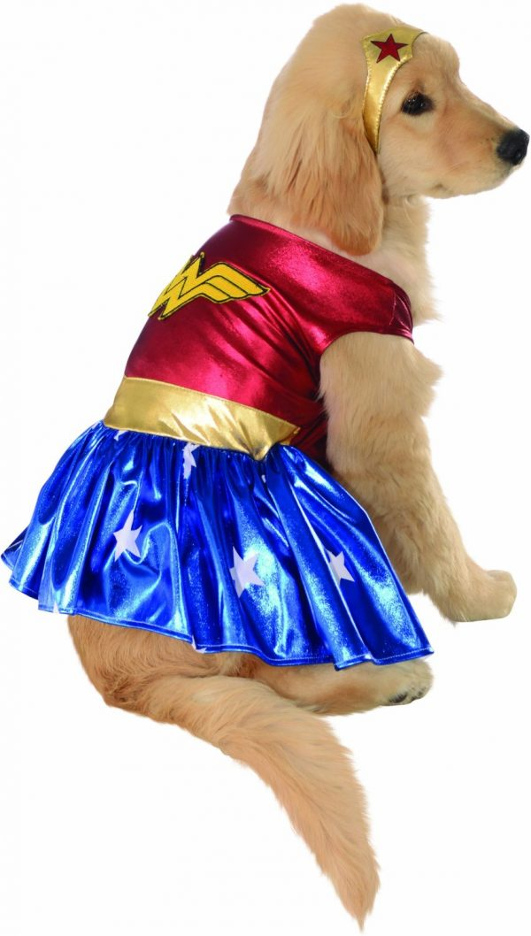 Dog Wonder Woman Costume