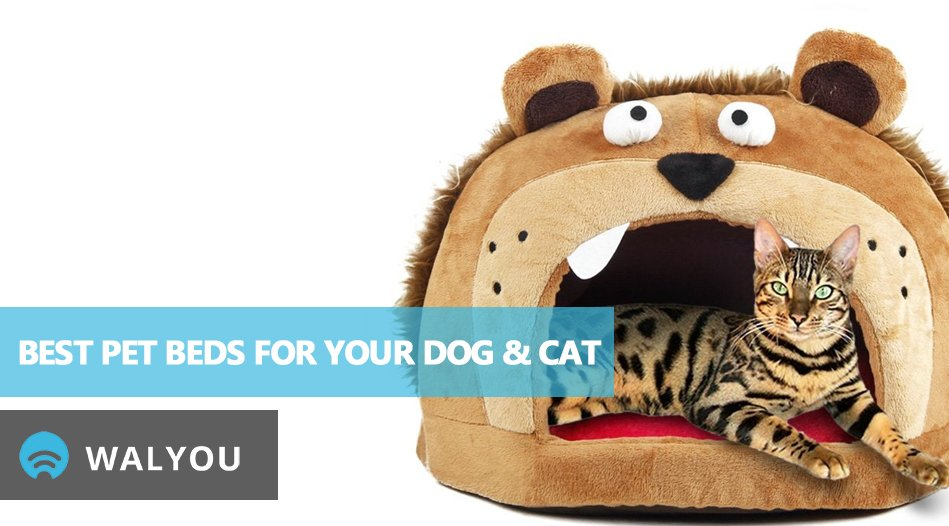 7-funny-pet-palaces-to-buy-your-cat-dog-this-christmas