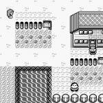 The First Pokemon