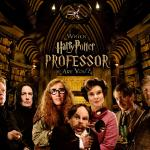Harry Potter Prof.