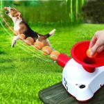 Dog Fetch Toy