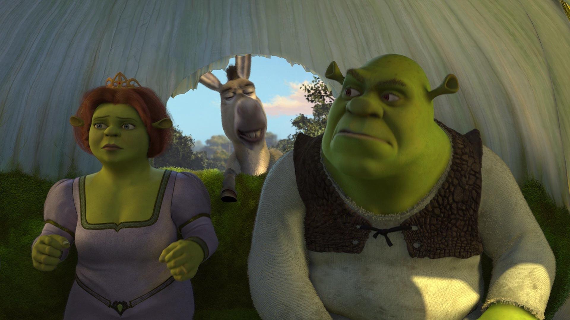 Shrek 2 Fiona & Donkey