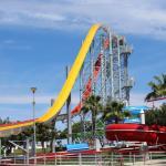 Free Fall Kamikaze Water slide