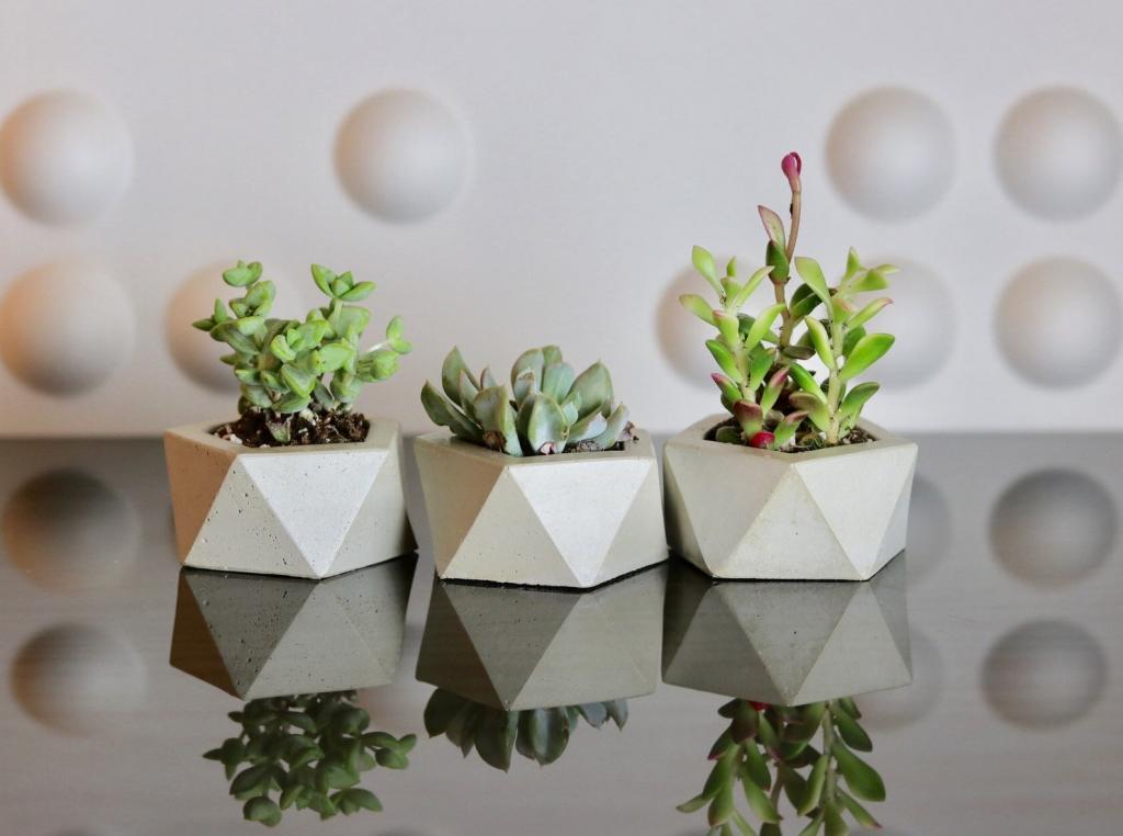 modern Pentagon Concrete planter