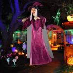 Life-Size Hanging Talking Witch Decorations