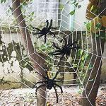 Three Realistic Looking Hairy Spiders with Giant Halloween Spider Web