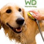 Wondurdog Quality at Home Dog Wash Kit for Shower