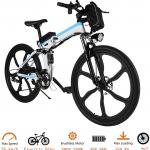 Tomasar Power Electric Bike