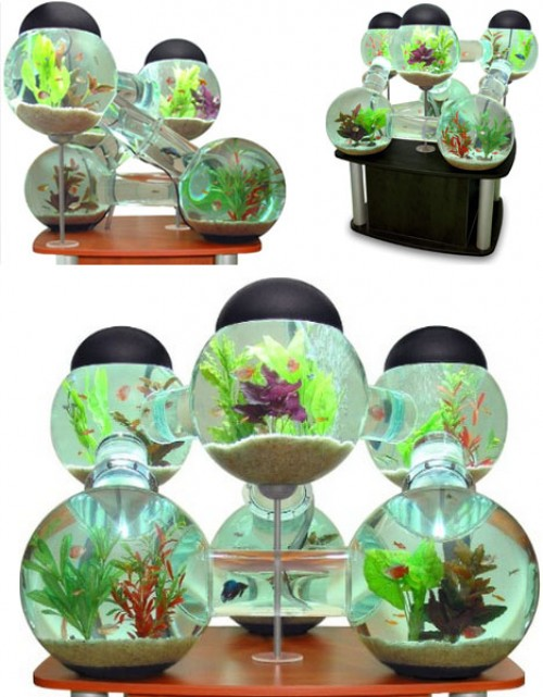 16 Weird Amp Unusual Aquariums